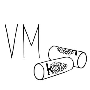 VM.facebook300x300