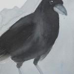 Anne van As - Black hoodie 2017 Oost-Indische inkt, acryl en potlood op artistico Fabriano 300 grams, 20 x 15 cm  opgeplakt op aluminium